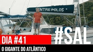 THE GIANT OF ATLANTIC | #SAL # 41 | Around the Atlantic on a sailboat and persecution at sea