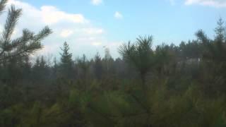Zrzut wody samolotu PZL M18 Dromader na palący sie las w Zajączkach