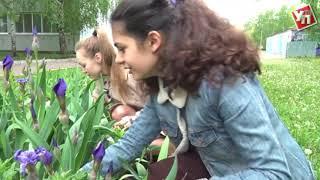 В Ульяновске увеличат пособие по безработице и трудоустроят 1200 подростков на каникулах