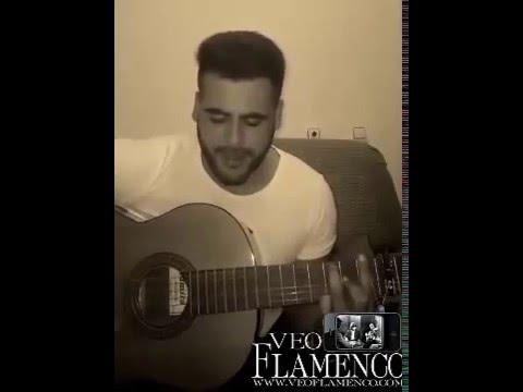 alvaro-dime-donde-esta-el-camino-veoflamenco-veo-flamenco-oficial
