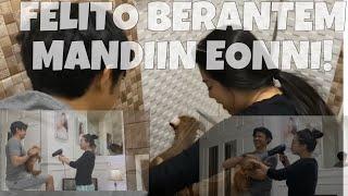 FELITO BERANTEM MANDIIN ANAK BULU! | Felicya Angellista