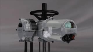 Rotork rotork swarovskicordoba Gallery