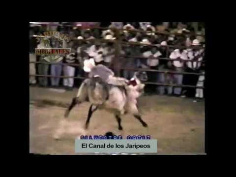 JARIPEOS DE LA MUERTE! con cancion de Paraiso Tropical de Durango (a que le tiramos)