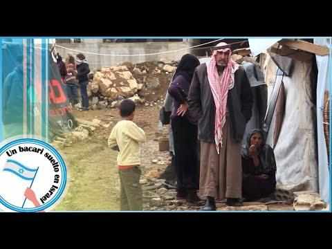 Analisis Sobre El Conflicto Arabe - Israeli (Segunda Parte)
