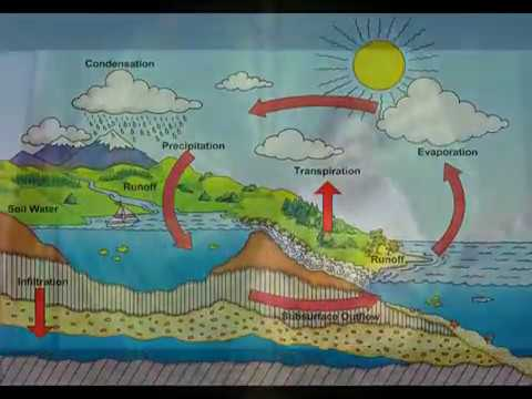 Water Cycle Project - YouTube