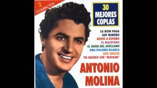 Antonio molina - Una paloma Blanca