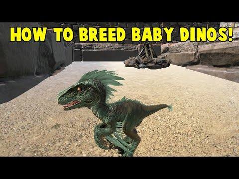 How to Breed Baby Dinos! Ark Survival Evolved - YouTube