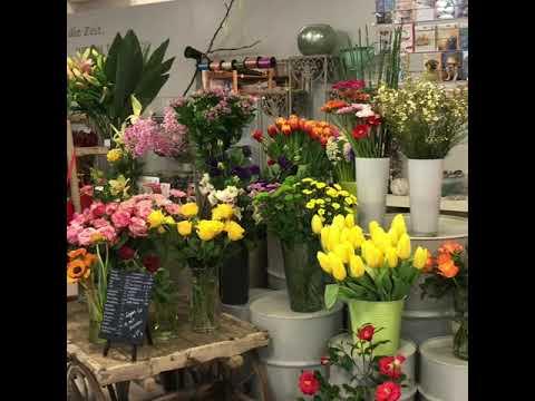 Blumen-Fee Zürich