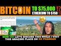 Profit Trailer : Update #42  Bitcoin Trading Bot  Bitrrex Binance & Poloniex Cryptocurrency Bot