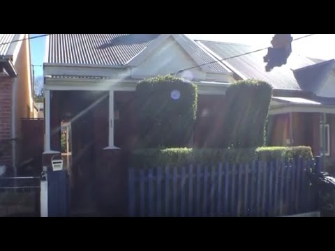 Rent a House in Sydney: Annandale Home 2BR/1BA by Sydney Property Management