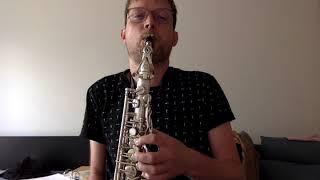 instrumentenvoorstelling sax wemmel