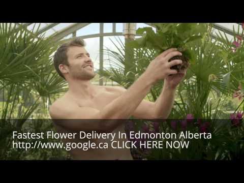 Same Day Flower Delivery Edmonton Alberta