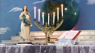 Ofício Solene em homenagem à Mãe Preta Universal - Homilia