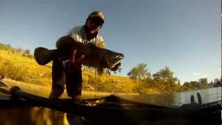 Cod Fishing from a Canoe in Tenterfield Creek