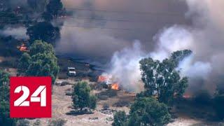 Смотреть видео Тревожный рекорд: что связывает теплую зиму в России с пожарами в Австралии - Россия 24 онлайн