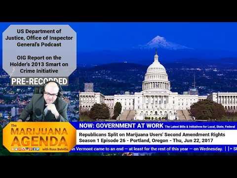 Republicans Split on Marijuana Users' Second Amendment Rights