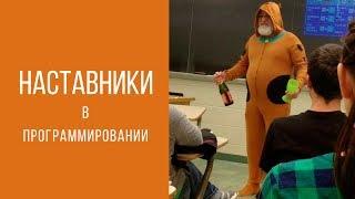Виды наставников в программировании