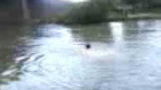 Rio nazas Durango desde Rodeo Victor Delgadillo nadando.mp4
