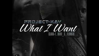 Project-kay - What I Want Ft Flowsik, Ushe-s And Clara-t (audio)