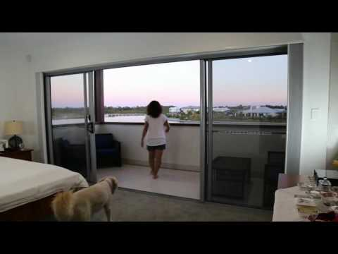cell play banner from select cellular and blinds honeycomb shades video