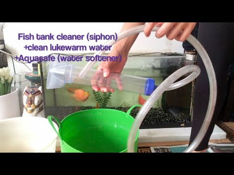 How To Clean Aquarium Fish Tank With A Vacuum Hand Pump / Siphon / Syphon - Easy!