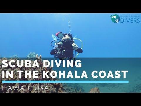 Scuba diving in Kohala Coast, Big Island, Hawaii