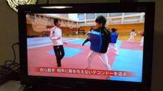 WTFテコンドー日本代表.