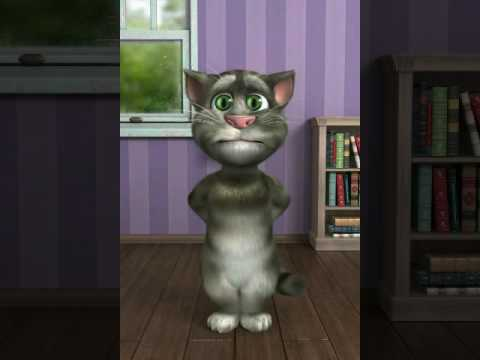 Talking Tom sings don't you open up that window