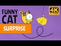 VIDEOS FOR CATS - YELLOW SURPRISE / CAT GAMES