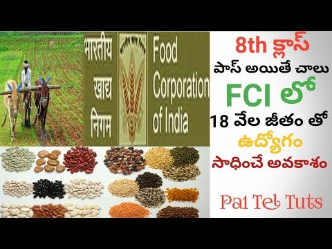 Food Corporation Of India Jobs with 8th Class Qualification| in Telugu By Pa1 - FCI Jobs
