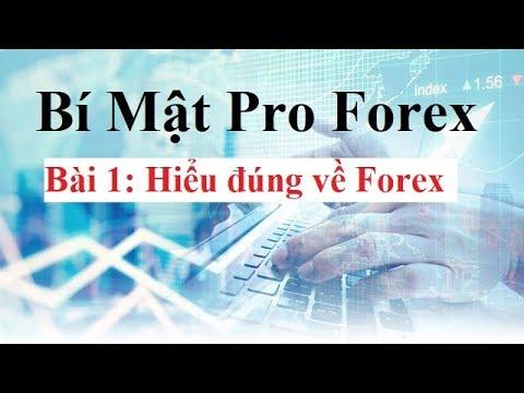 Bí mật Pro Forex  Bài 1 – Hiểu đúng về Forex – Đầu tư Forex Cơ Bản đến Nâng Cao
