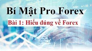Bí mật Pro Forex  Bài 1 - Hiểu đúng về Forex - Đầu tư Forex Cơ Bản đến Nâng Cao