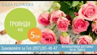 Zaza Flowers Обновлённые рекламный ролик(Создан 10.11.2013., 2013-11-10T17:37:12.000Z)