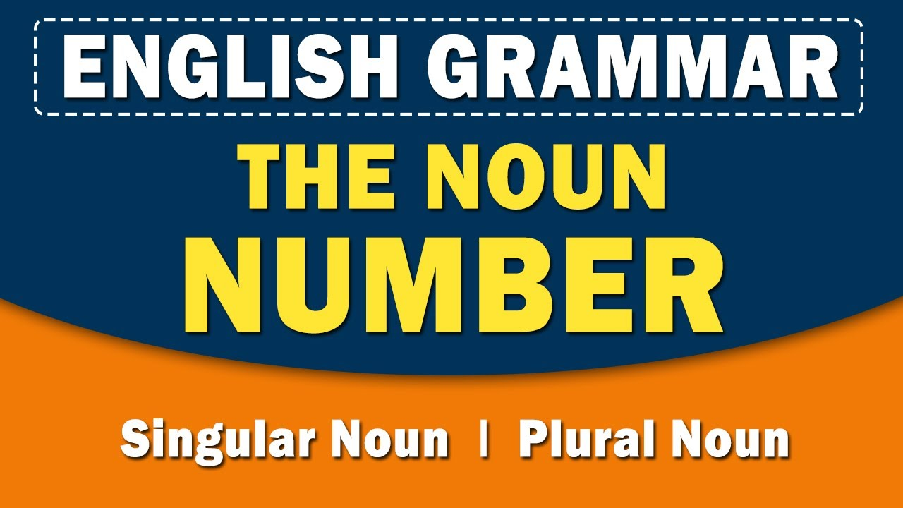 The Noun Number | English Grammar | Home Revise | Learn with examples