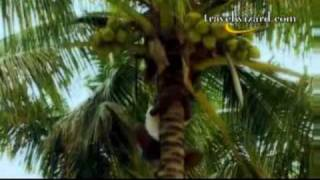 Sonaisali Island Resort Attraction Video