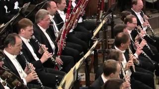 Beethoven, Symphony 9.1.1 - Allegro Ma Non Troppo, Un Poco Maestoso (D minor Op 125)