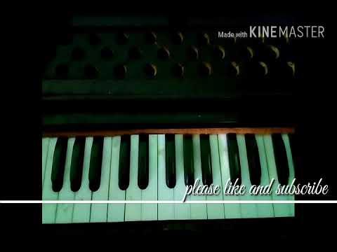 Chinha Mange Tai Dehe Mundri Ke CG Song Harmonium Pe Kaise Bajayen