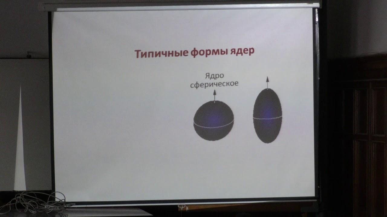 Капитонов И. М. - Физика атомного ядра и частиц - Коллективные возбуждения ядер
