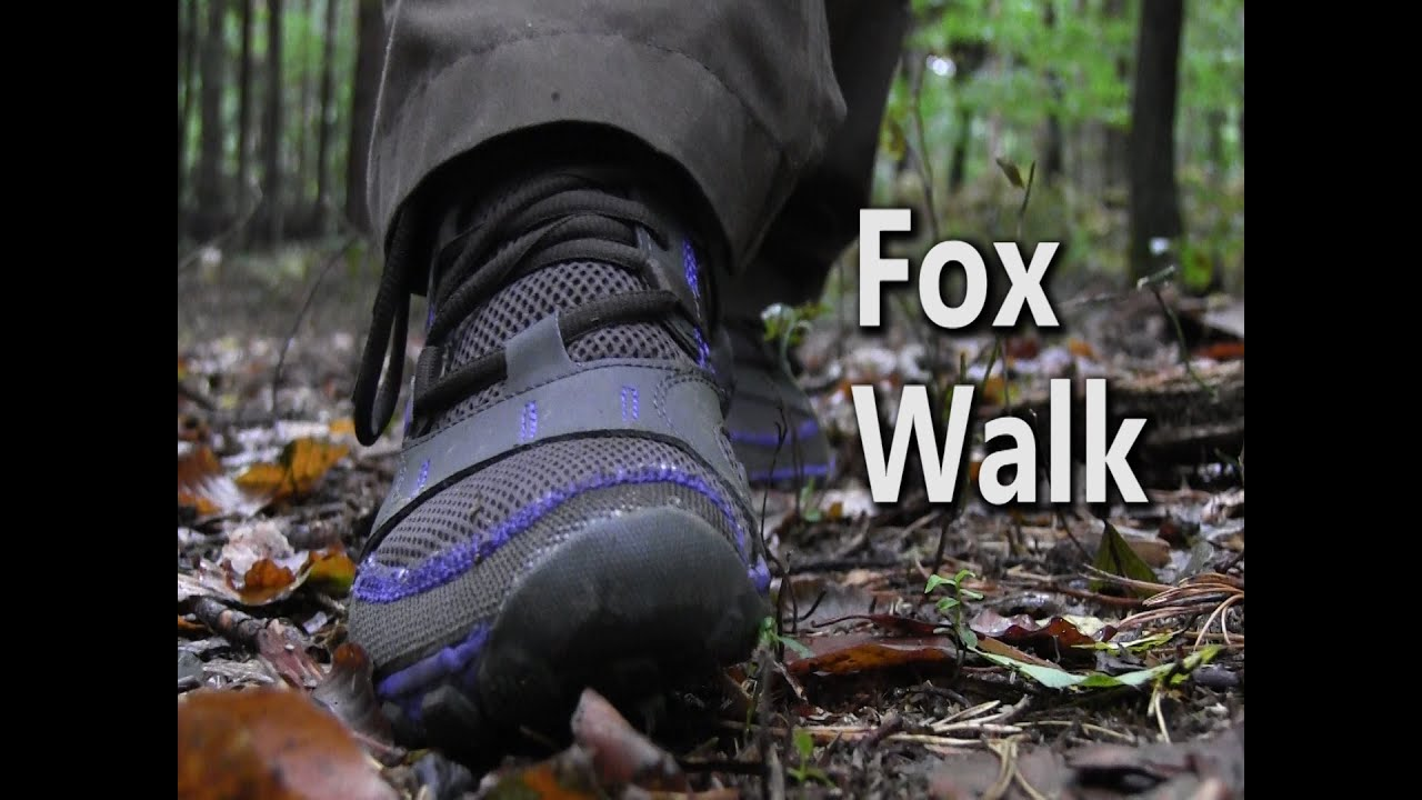 fox walk how to walk silently through the woods youtube. Black Bedroom Furniture Sets. Home Design Ideas