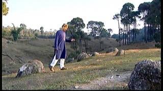 phulke pakde rahe full song chhail jawana