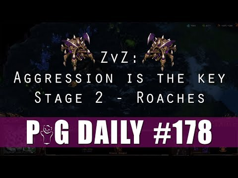 ZvZ - Aggression is the Key - Stage 2 - Roaches - The PiG Daily #178