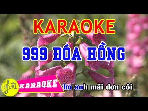 999 Đóa Hồng Karaoke    Beat Chuẩn