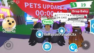 Roblox Adopt Me Pets Update Countdown