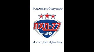 AT-Hockey - Саблезубые Тигры (29.07.17)