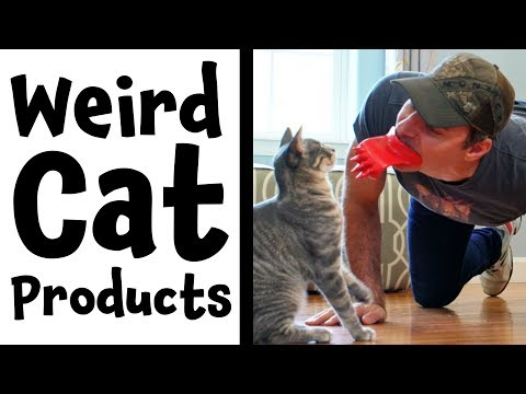 Weird Cat Products Found On Amazon | Lick'em Cat Scratcher | Review