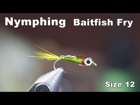 Nymphing Baitfish - Small Fry For Fly Fishing - McFly Angler Fly Tying Tutorials