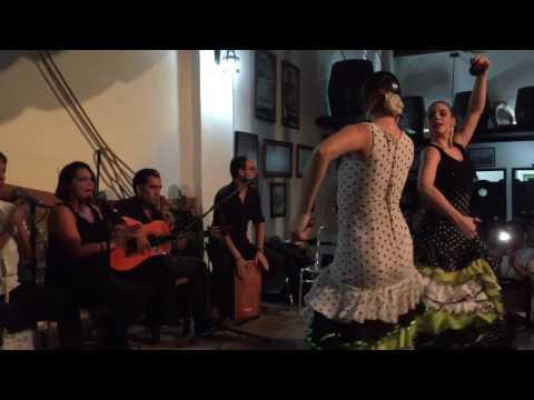 Flamenco at El Meson de la Flota