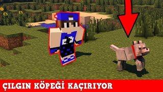 HIRSIZ VS POLİS #61 - Çılgın Köpeği Kaçırıyor