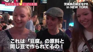いばらき宣伝隊長の渡辺直美は、イライラしていた・・。 日本国内では、...