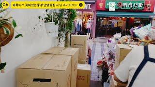 생화택배꽃배달 리얼영상공개!! 꽃가게 브이로그 안양꽃배…